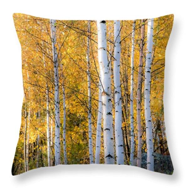 Thin Birches Throw Pillow by Ari Salmela