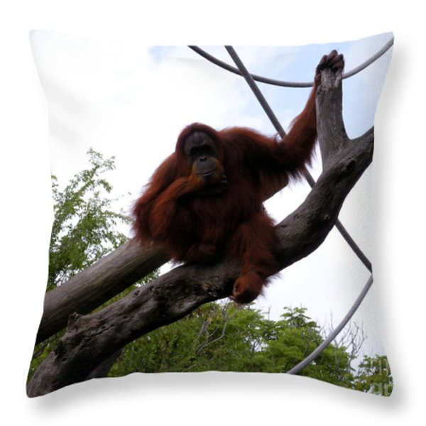 Thinking of you Throw Pillow by Joseph Baril