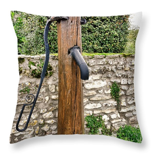 Thirst Quencher Throw Pillow by Olivier Le Queinec