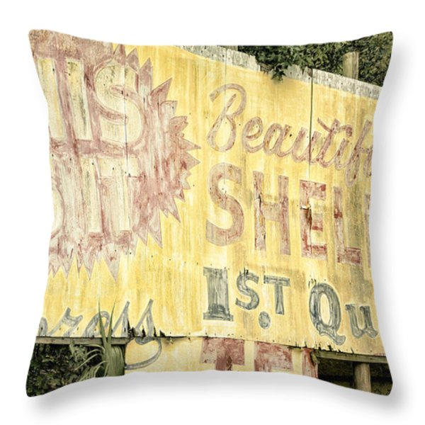 This Is IT Throw Pillow by Joan Carroll