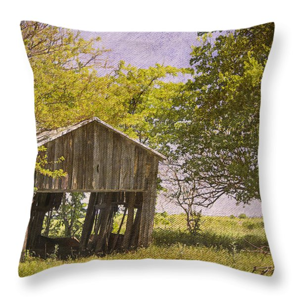This Old Barn Throw Pillow by Joan Carroll