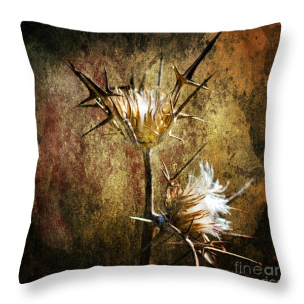 Thorns Throw Pillow by Stylianos Kleanthous
