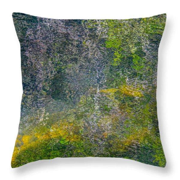 Thornton's Canvas Throw Pillow by Roxy Hurtubise