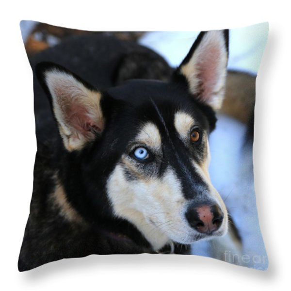 Those Eyes Throw Pillow by Carol Groenen