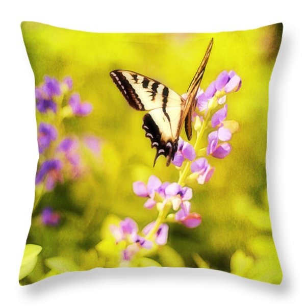 Those Summer Dreams Throw Pillow by Darren Fisher