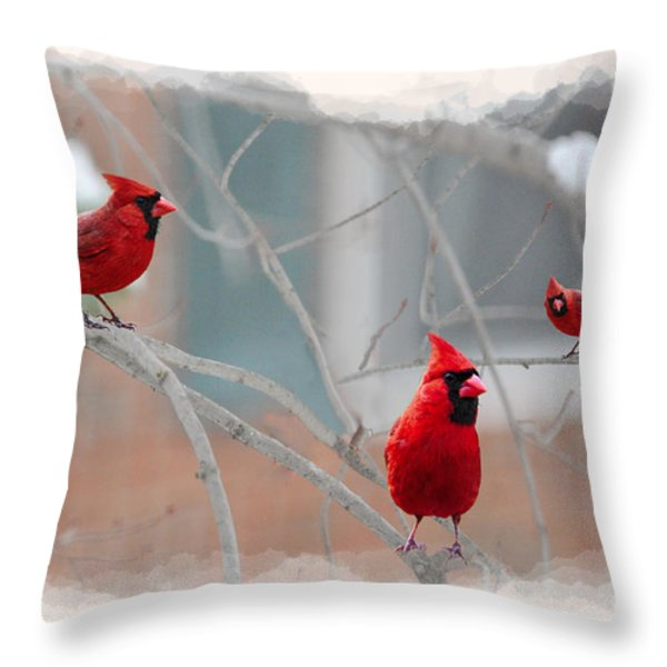 three cardinals in a tree Throw Pillow by Dan Friend