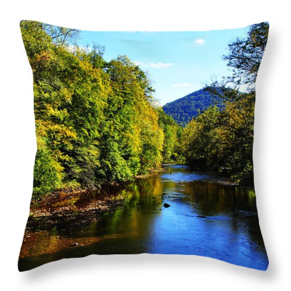 Three Forks Williams River Early Fall Throw Pillow by Thomas R Fletcher