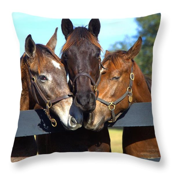 Three Friends Throw Pillow by Gordon Elwell