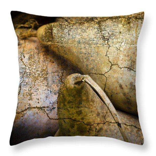 Three Gourds Throw Pillow by David Gordon