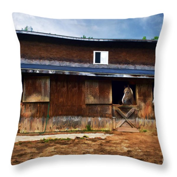 Three Horses In A Barn Throw Pillow by Dan Friend