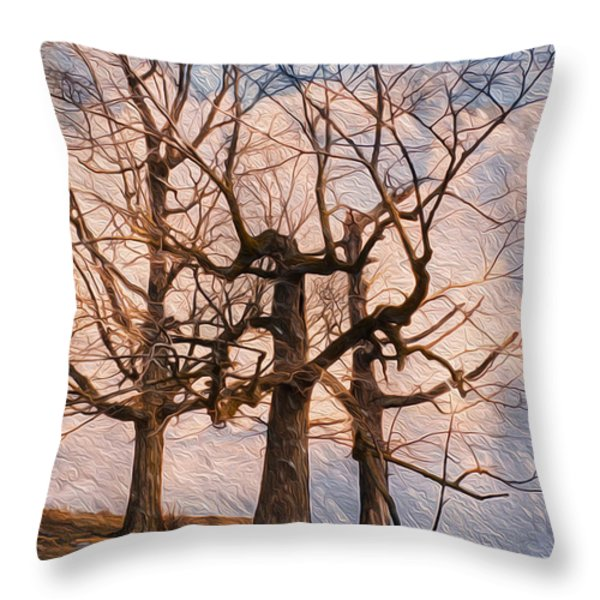 Three On The Hill - Color Throw Pillow by Jack Zulli