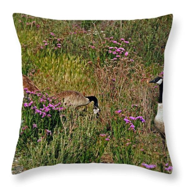 Three Quiet Canada Geese Throw Pillow by Susan Wiedmann