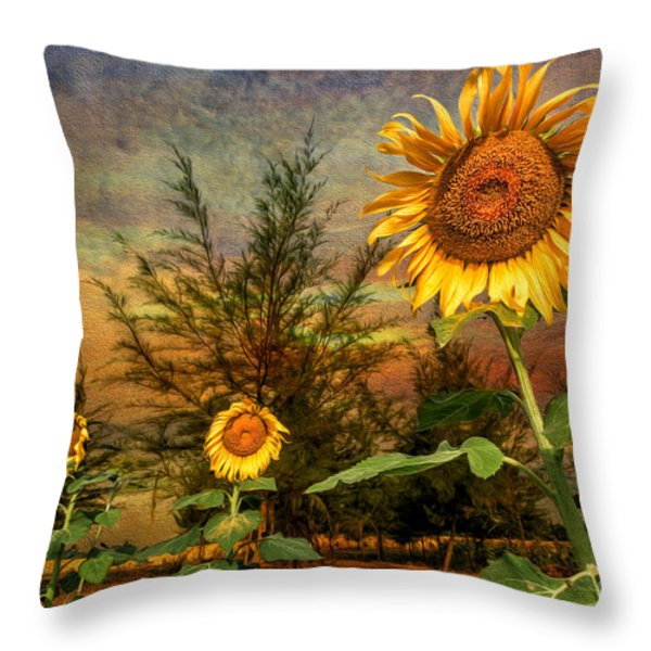 Three Sunflowers Throw Pillow by Adrian Evans