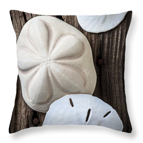 Three types of sand dollars Throw Pillow by Garry Gay
