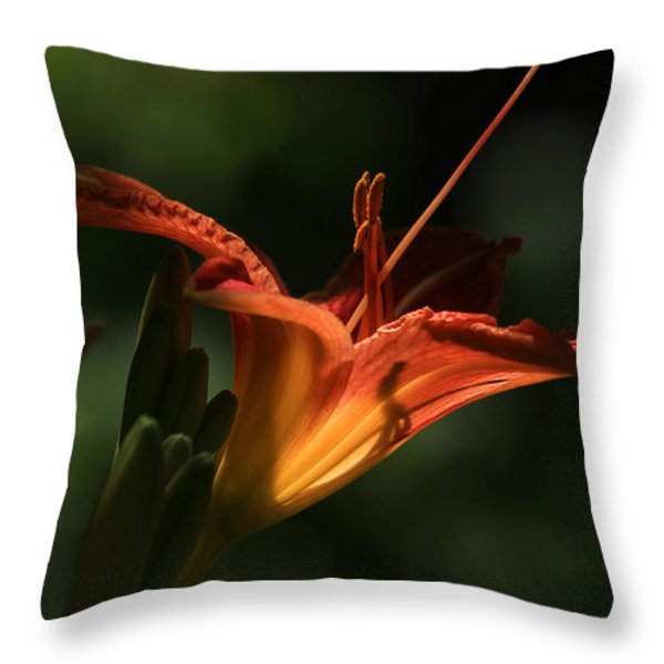 Throat Shadows Throw Pillow by Donna Kennedy