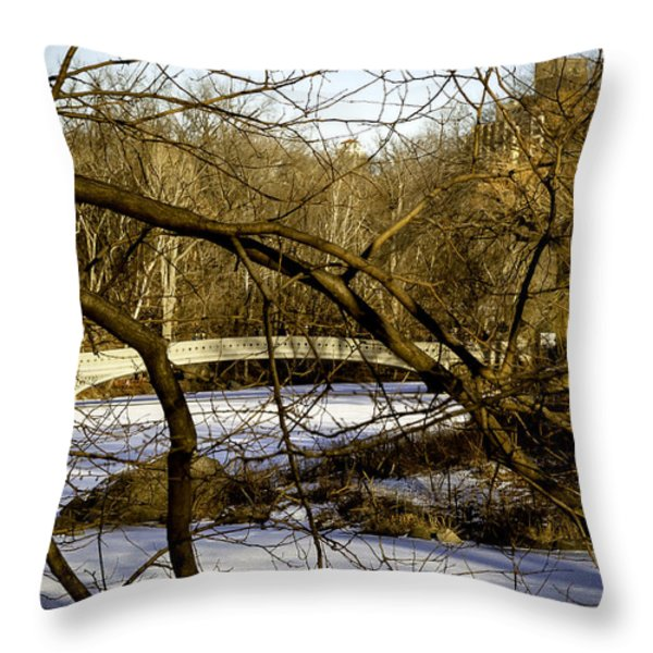 Through The Branches 2 - Central Park - NYC Throw Pillow by Madeline Ellis