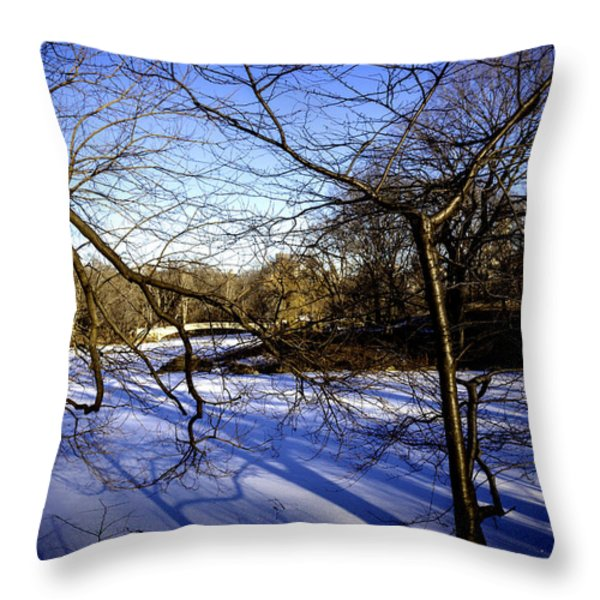 Through The Branches 4 - Central Park - NYC Throw Pillow by Madeline Ellis