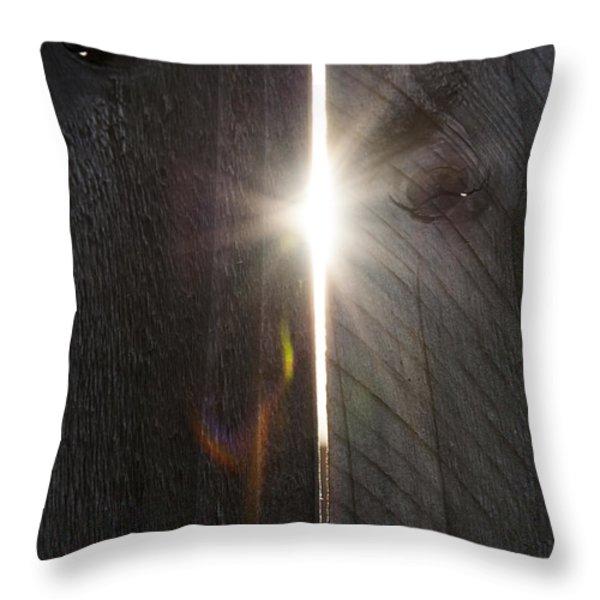 Through The Hole Throw Pillow by Svetlana Sewell