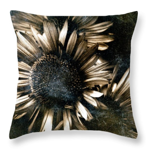 Through The Looking Glass Throw Pillow by Venetta Archer