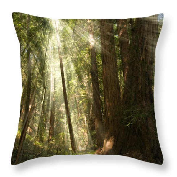 Through the Trees Throw Pillow by Mick Burkey