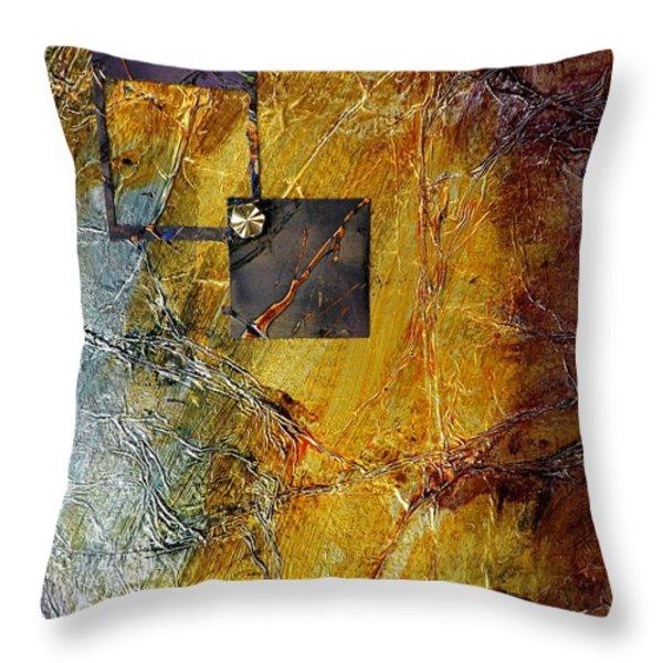 Through The Window Throw Pillow by Darren Robinson