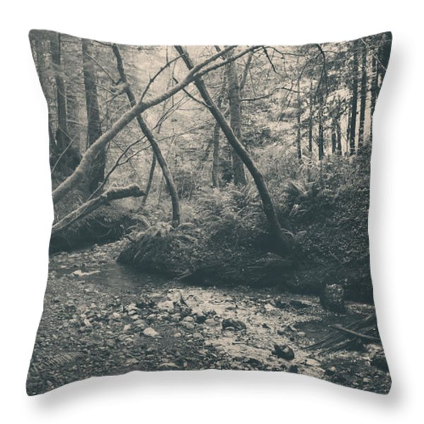 Through The Woods Throw Pillow by Laurie Search