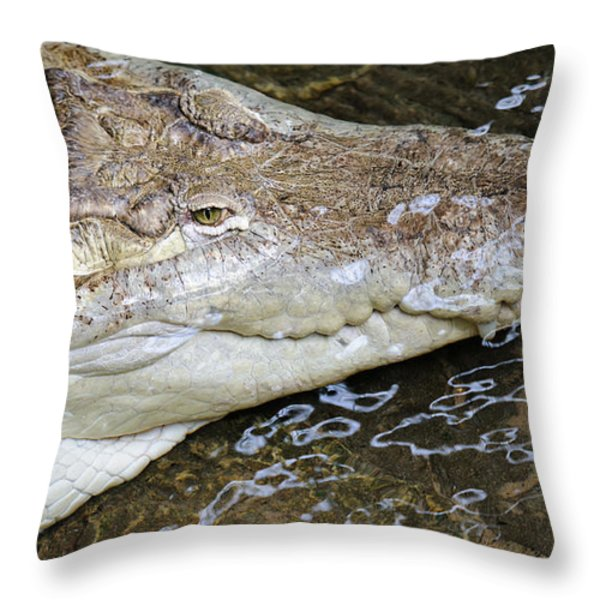 Tick-tock Throw Pillow by Charles Dobbs