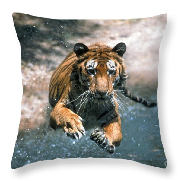 Tiger Leaping Throw Pillow by Mark Newman