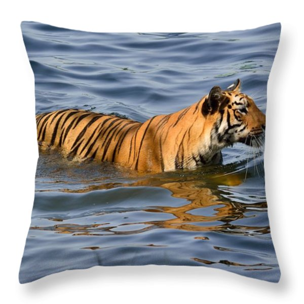 Tigress Of The Lake Throw Pillow by Fotosas Photography