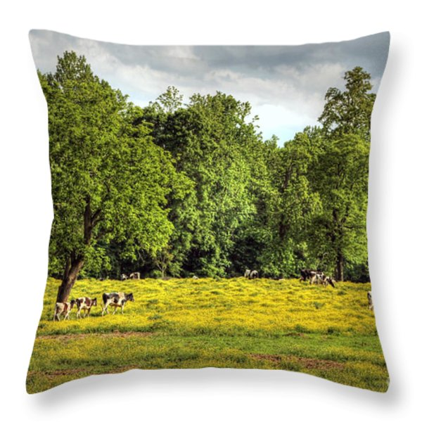 Till the Cows Come Home Throw Pillow by Benanne Stiens