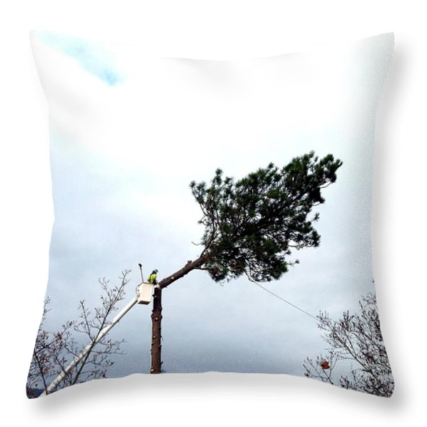 Timber Throw Pillow by Will Borden
