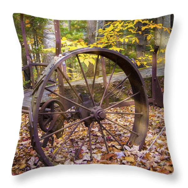 Time Pasts Throw Pillow by Alana Ranney