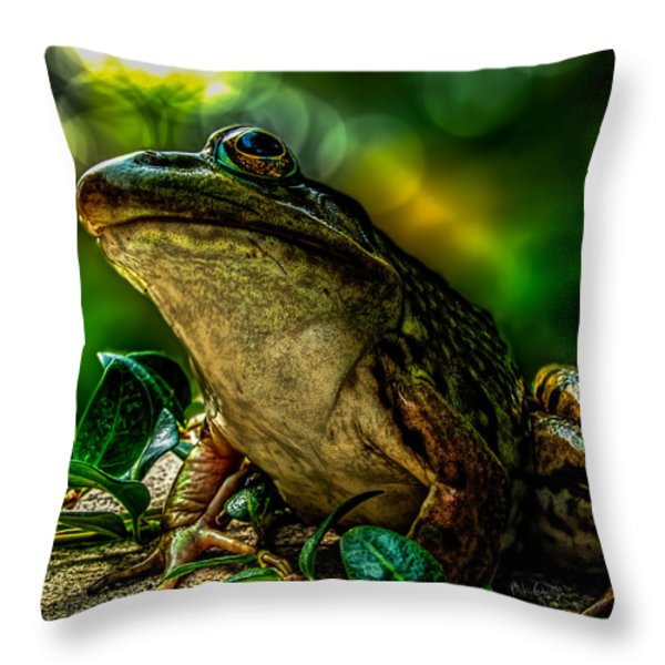 Time Spent With The Frog Throw Pillow by Bob Orsillo