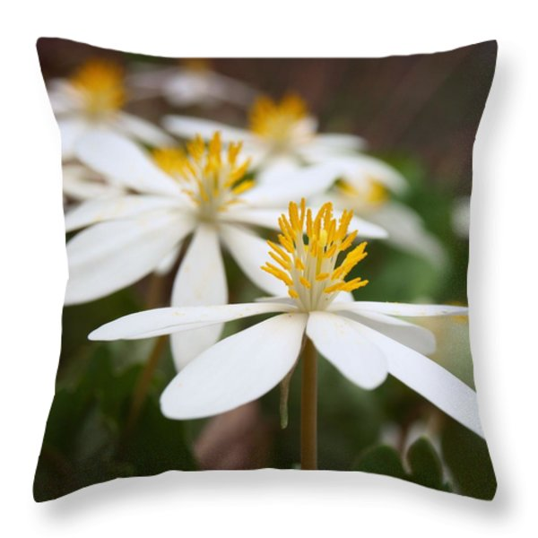 tiny dancers Throw Pillow by Tom Druin