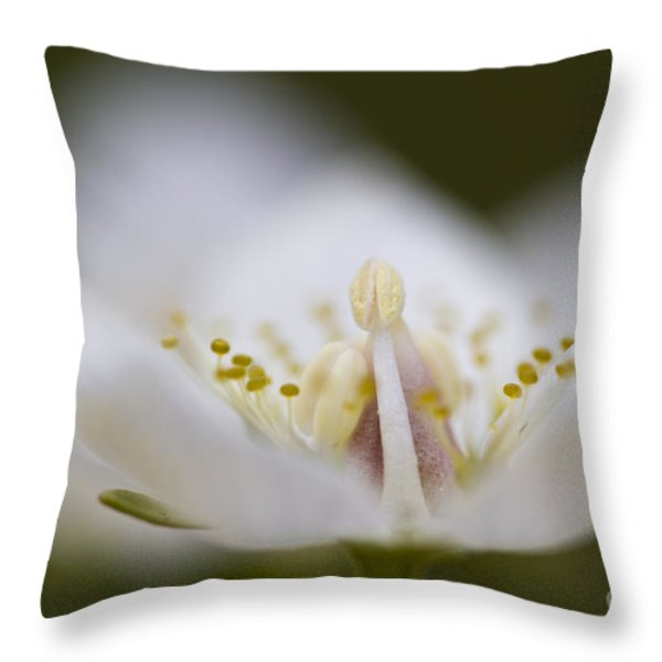 Tiny Little Arctic Wildflower Throw Pillow by Heiko Koehrer-Wagner