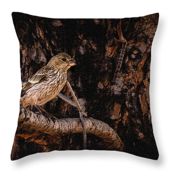 Tiny Sparrow Huge Tree Throw Pillow by Bob and Nadine Johnston