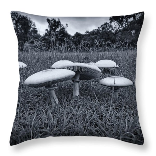 Toadstools-Black and White Throw Pillow by Douglas Barnard