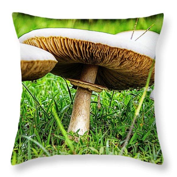 Toadstools V2 Throw Pillow by Douglas Barnard