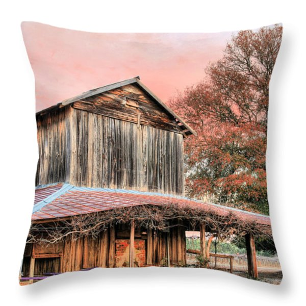Tobacco Road Throw Pillow by JC Findley