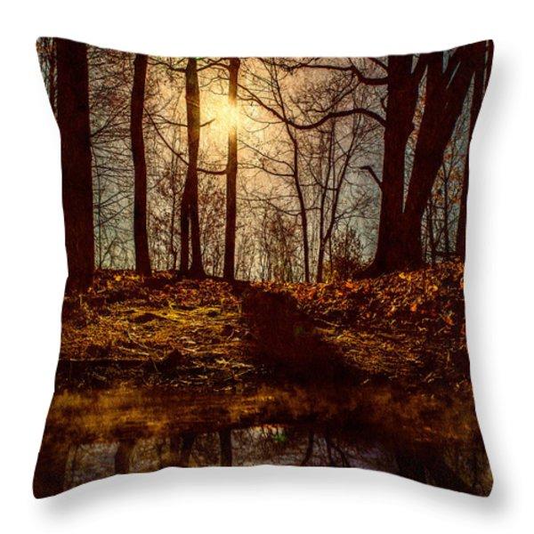 Today Throw Pillow by Bob Orsillo