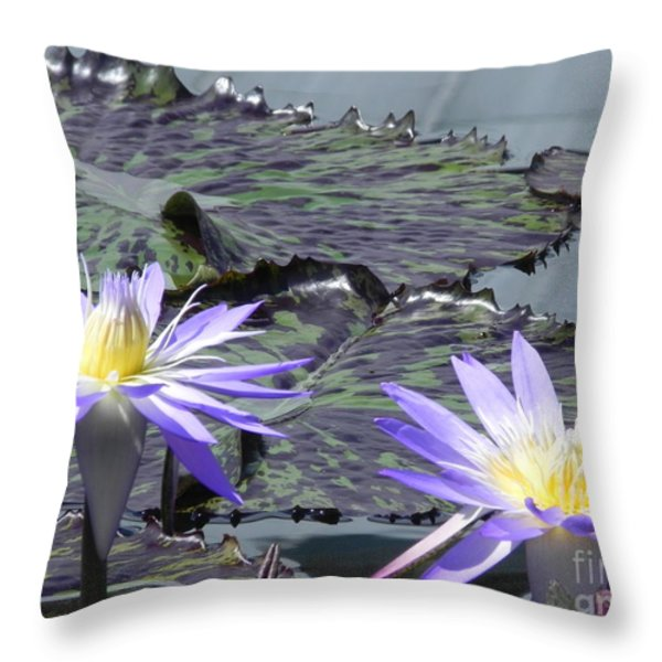 Together Is Beauty Throw Pillow by Chrisann Ellis
