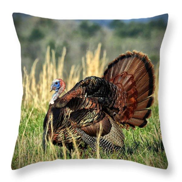 Tom Turkey Throw Pillow by Jaki Miller