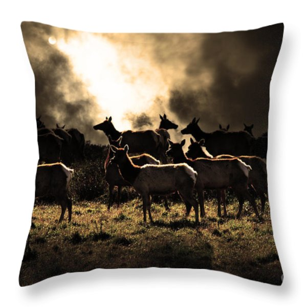 Tomales Bay Harem Under The Midnight Moon - 7d21241 - Sepia Throw Pillow by Wingsdomain Art and Photography
