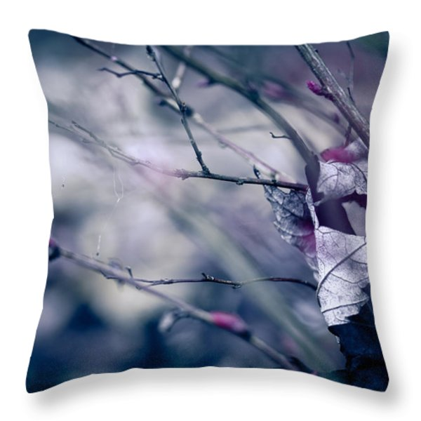 torn and tattered Throw Pillow by Shane Holsclaw