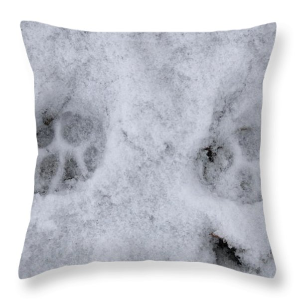 Traces Of A Cat In The Snow Netherlands Throw Pillow by Ronald Jansen