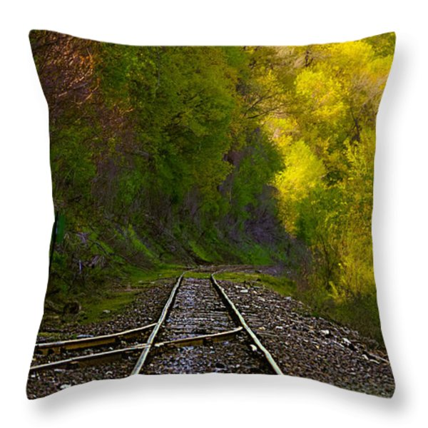 Track Through The Hillside  Throw Pillow by Peggy  Franz