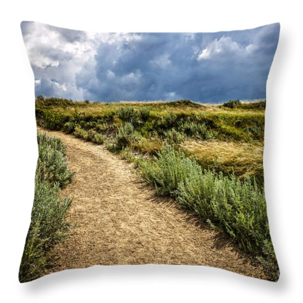 Trail In Badlands In Alberta Canada Throw Pillow by Elena Elisseeva