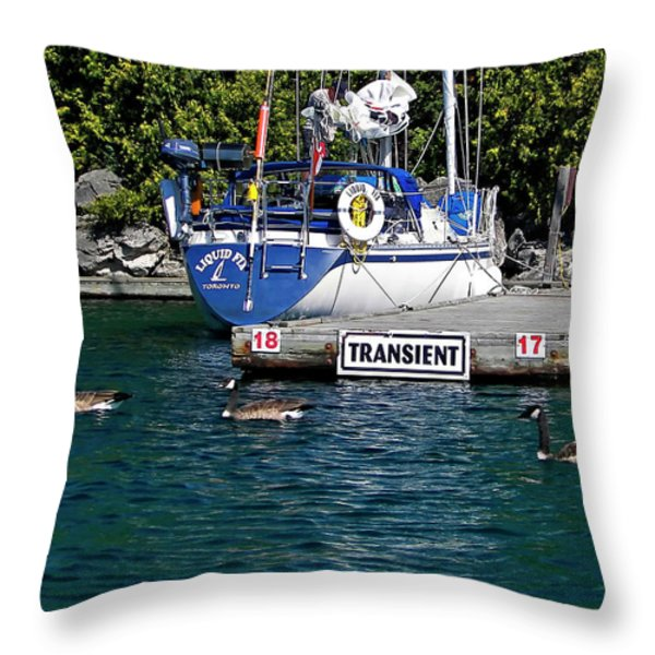 Transients Throw Pillow by Steve Harrington