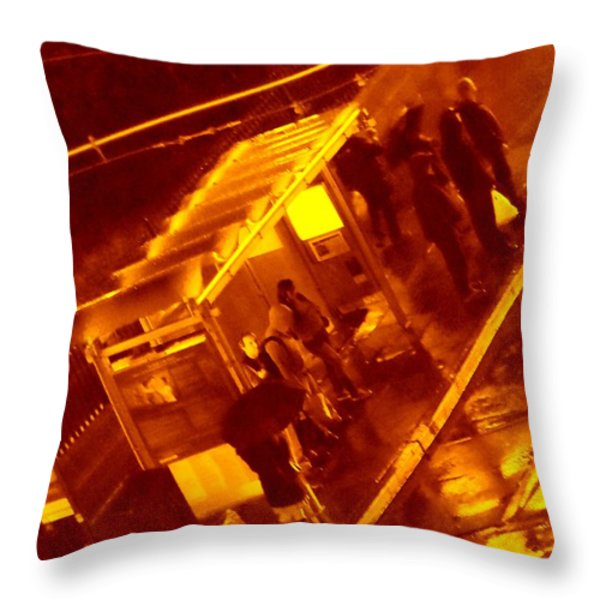 Travel Companions Throw Pillow by Nick David