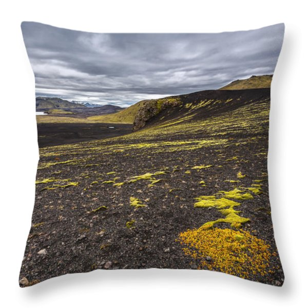 Traveling Down Throw Pillow by Jon Glaser